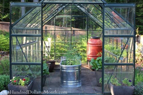 greenhouse gardening seattle