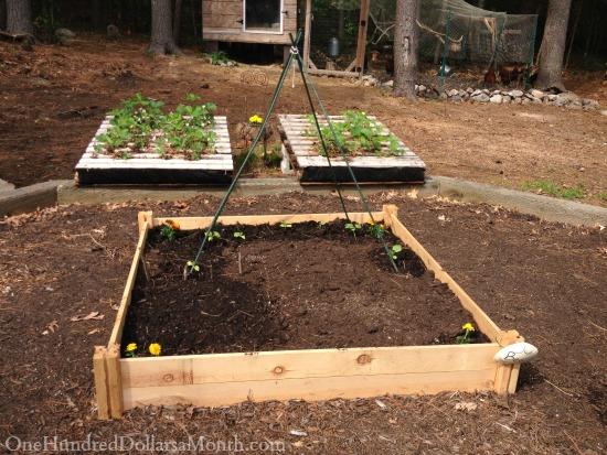 pallet garden photos
