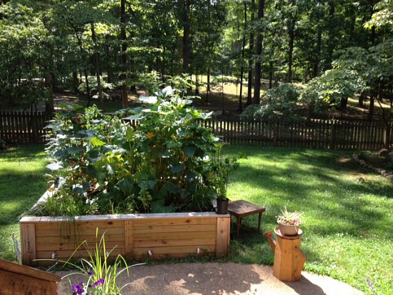 A Small Garden From Virginia Packs A Lot Of Vegetables Into A 6x8