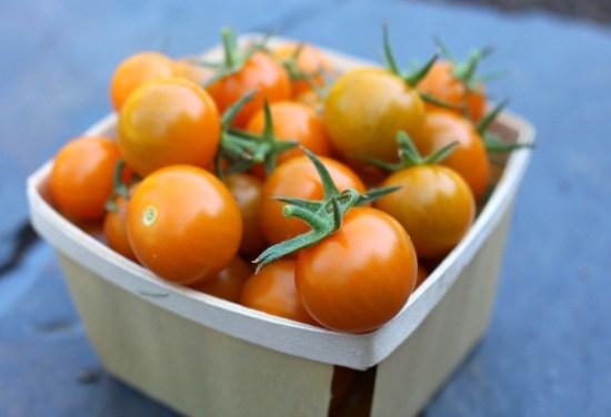sun-gold-tomatoes
