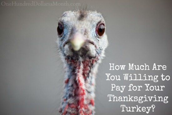 How Much Are You Willing to Pay for Your Thanksgiving Turkey