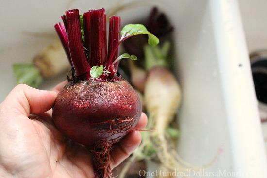 homegrown organic beets