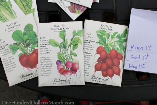 botanical interests seed packets radish