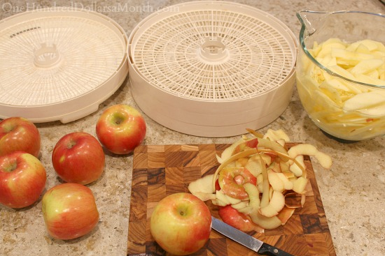 dehydrating apples in a food dehydrator