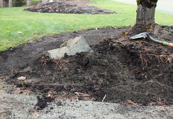 digging up front garden bed