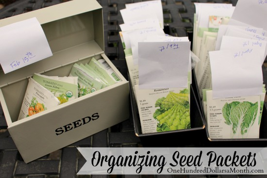organizing seed packets botanical interests