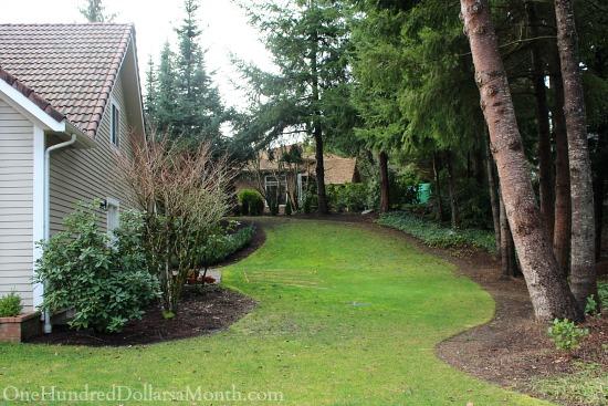 side of house garden