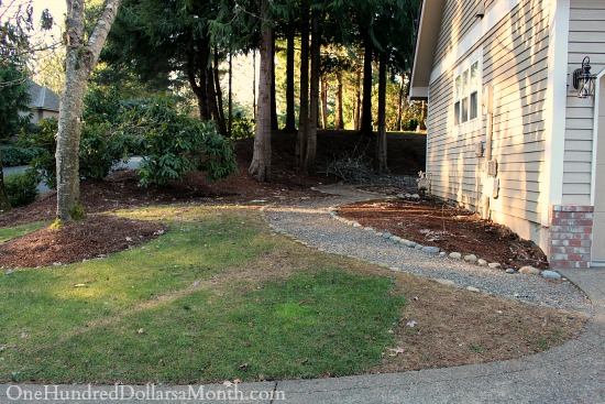 side yard with dead grass
