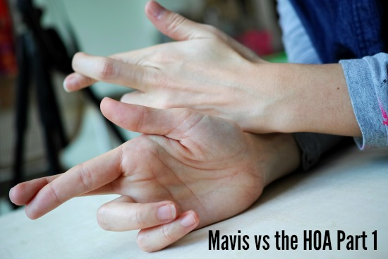 Mavis vs the HOA Part 1