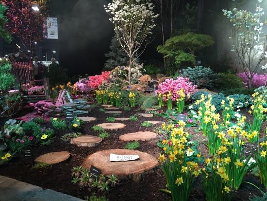 flower show 1