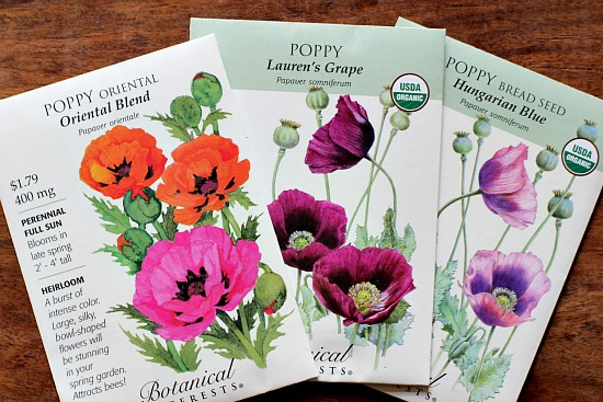 poppy-seed-packets