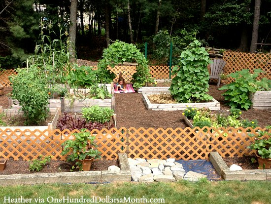 garden-boxes5