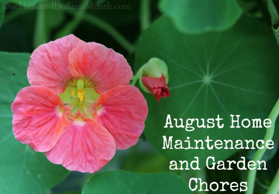 August Home Maintenance and Garden Chores