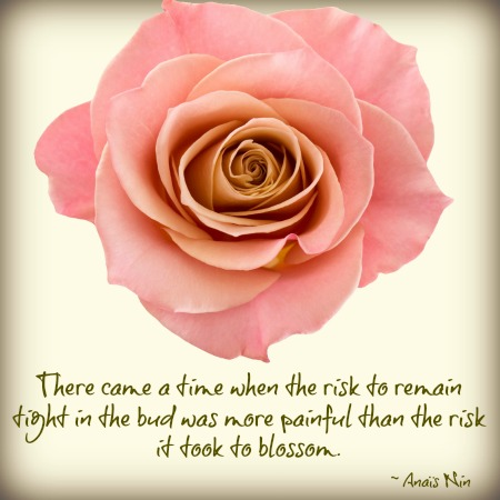 quotes - there came a time when the risk to remain tight in the bud
