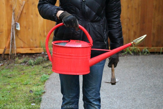 red hass watering can