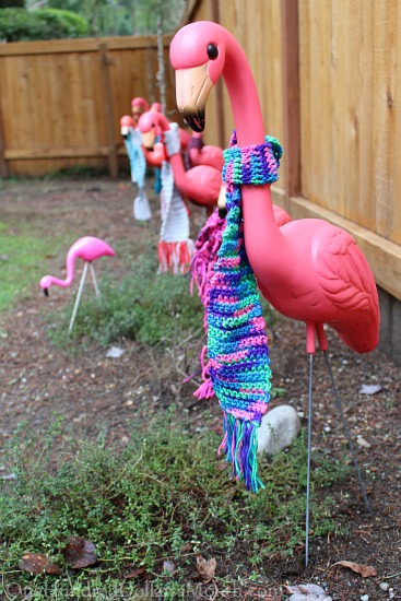 flamingos wearing scarves