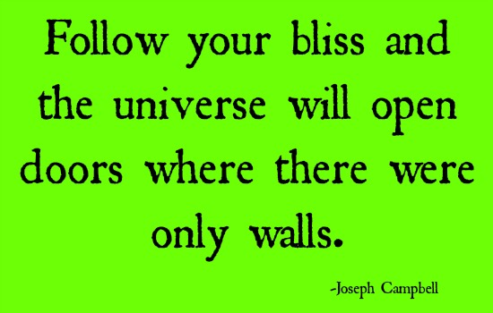 quotes - follow you bliss