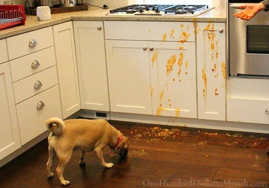 lucy kitchen spills spilled soup