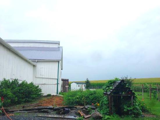 garden skid house