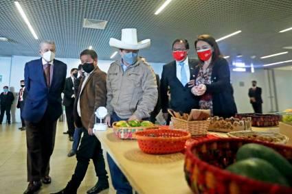 """Presidente Castillo: """"En momentos de urgente reactivación económica Expo Dubái 2021 permitirá al Perú promover los negocios, inversiones, turismo, agroexportaciones y textilería para el mundo"""""""