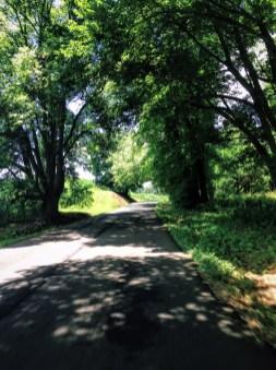 Blue Ridge Parkway roadtrip by Yohann Gauthier