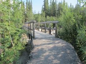Foot bridge over Hines Creek