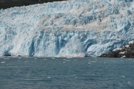 This was one of the most active Glaciers I saw on the trip. The face here is about 300 feet tall.