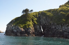 Next stop Chiswell Islands. Notice the gap between rocks, then see the white birds flying in front.