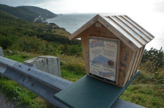 The park had an educational program for kids that involved stopping places and getting stamps, this one was at a good place to watch for whales (in season).
