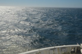 Open water with a bit of a swell