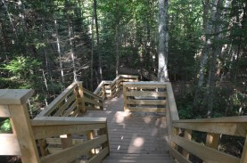 After winding through the woods, this stair brings you back down to the main trail.
