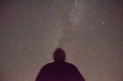TrailBear's-Head Nebula?