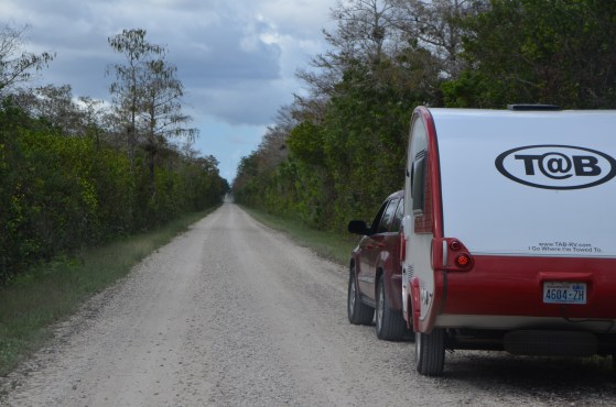 Smooth, straight gravel road through the cypress swamp.