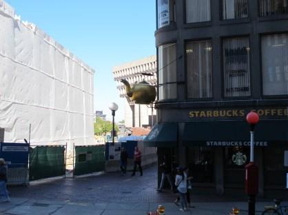 "Starbucks ""tea"" (and coffee)"