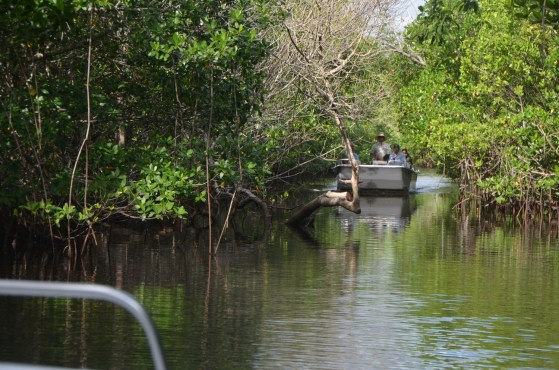 We met a couple of boats coming out. It was interesting how even the youngest kids were quiet here under the mangroves.
