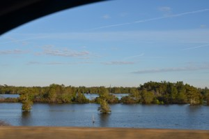 Looking out the passenger window at the swamps below.