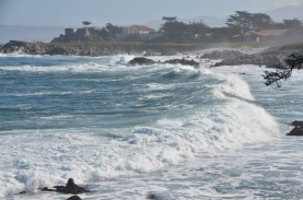 Waves bend around and surge into the cove. You can just see the seals on the beach furthest away.