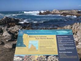 Asilomar Marine Reserve
