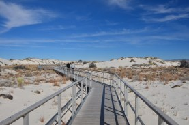 """""""Interdune Boardwalk"""" - Walkway out over the dunes. All parts of this walkway are connected together by large gauge wire, and then grounded to the sand as well. Even so you build up a pretty good charge walking a hundred feet. You'll get used to the light shocks as you touch the rail."""