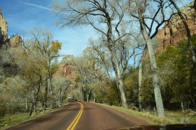 Along the canyon drive.