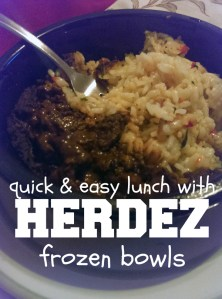 Quick and easy lunch (for adults!) with Herdez frozen bowls. 10 different authentic flavors! | One Mama's Daily Drama