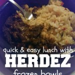 Quick and easy lunch with Herdez frozen bowls