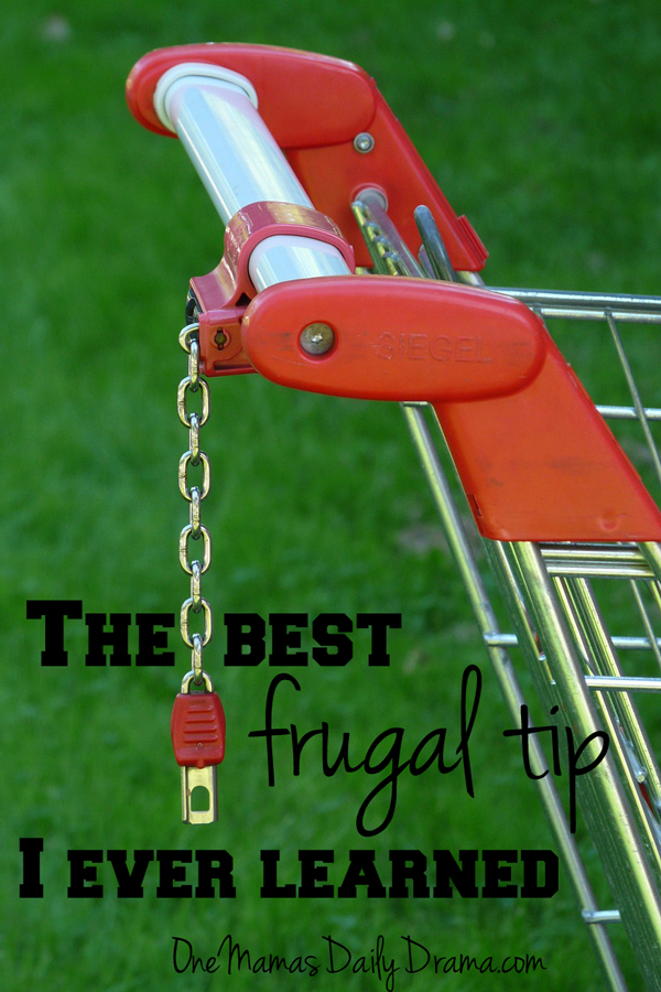 The best frugal tip I ever learned | One Mama's Daily Drama --- This one frugal tip can help you save money on grocery shopping.