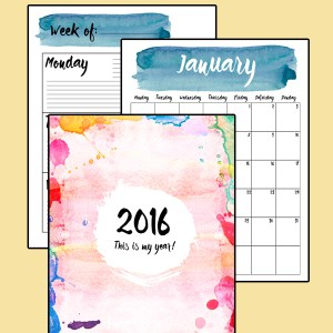 2016 printable planner | One Mama's Daily Drama --- Includes monthly calendar, week-at-a-glace organizers, and weekly schedule