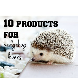 10 products for hedgehog lovers