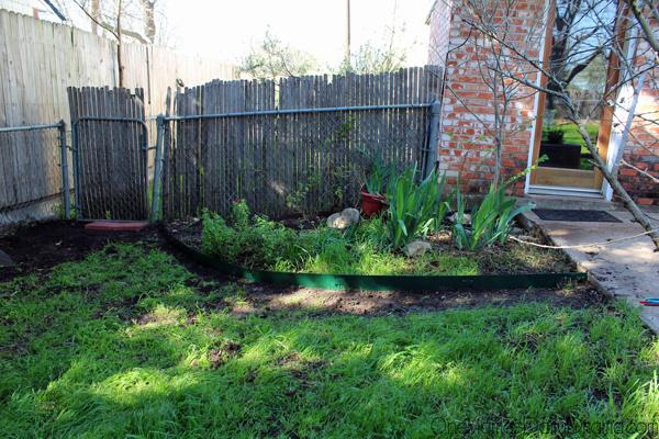 herb-garden4