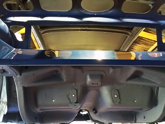 from inside the trunk