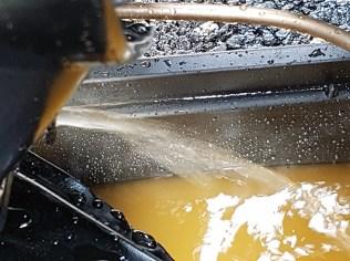 flush4