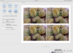 picasa-print-interface