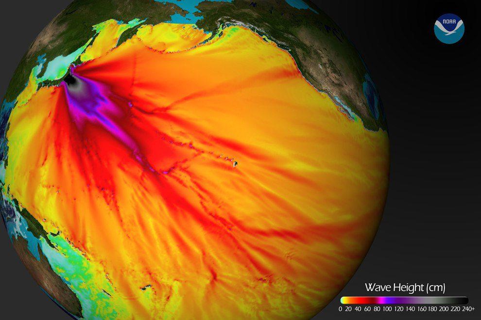 NOAA 2011 Japanese Tsunami Wave Height
